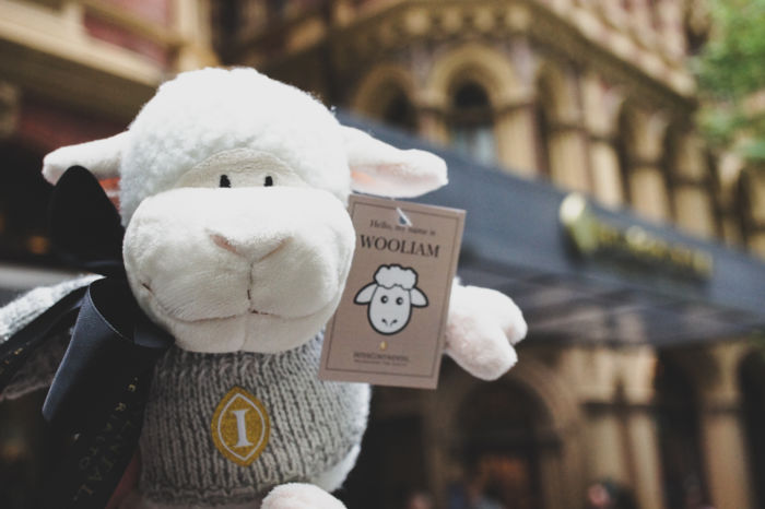 Wooliam Soft Plush | InterContinental Melbourne The Rialto